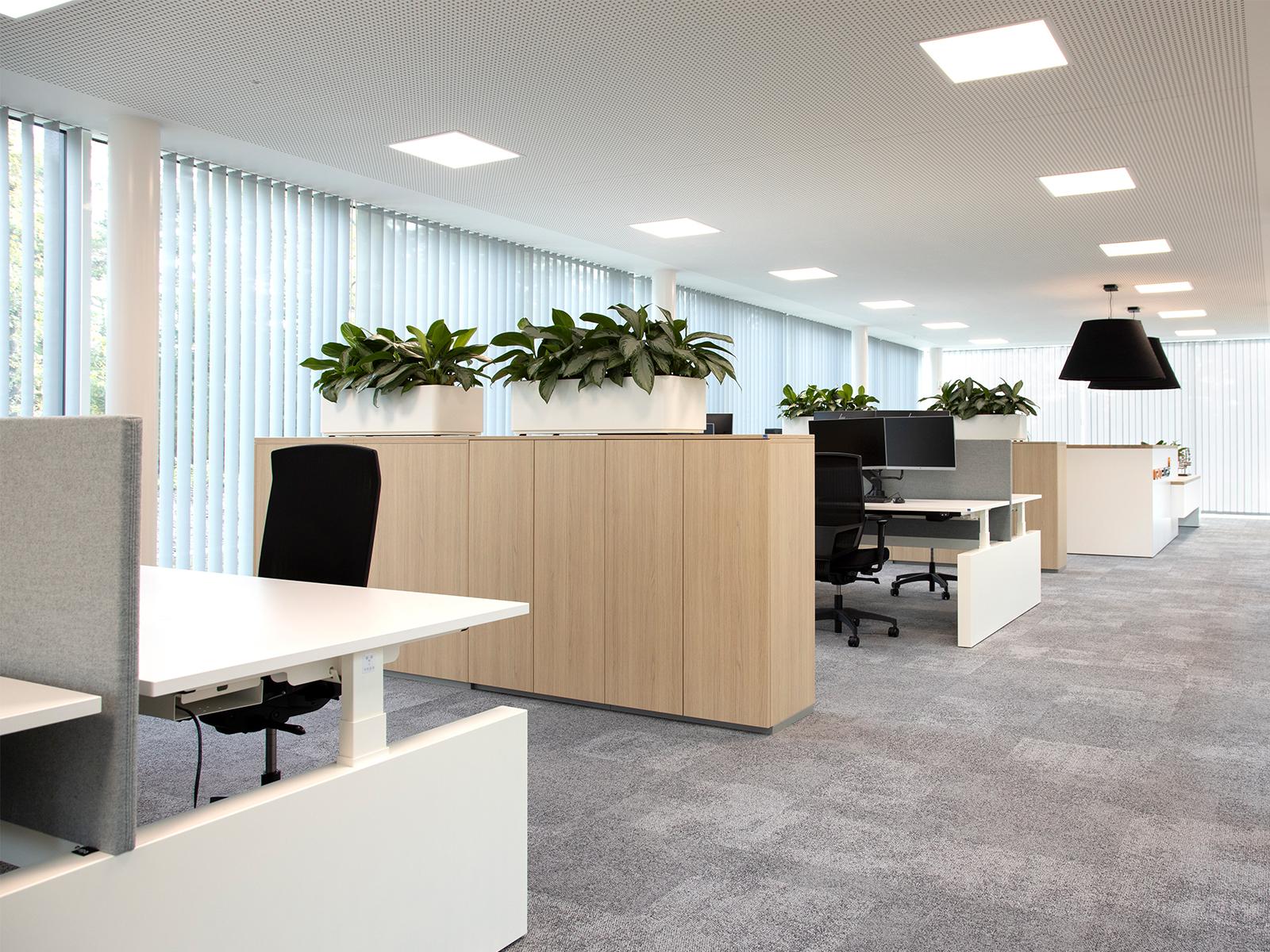 Waarom we productiever zijn in een licht kantoor